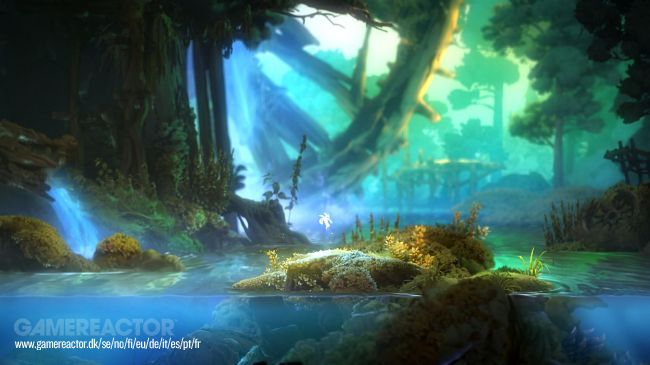 Ori and the Will of the Wisps está finalmente a correr como deve na Xbox One