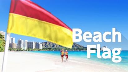 1-2-Switch - Beach Flag
