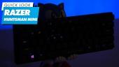 Razer Huntsman Mini - Quick Look