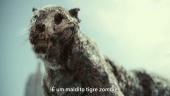 Exército dos Mortos - Trailer legendado